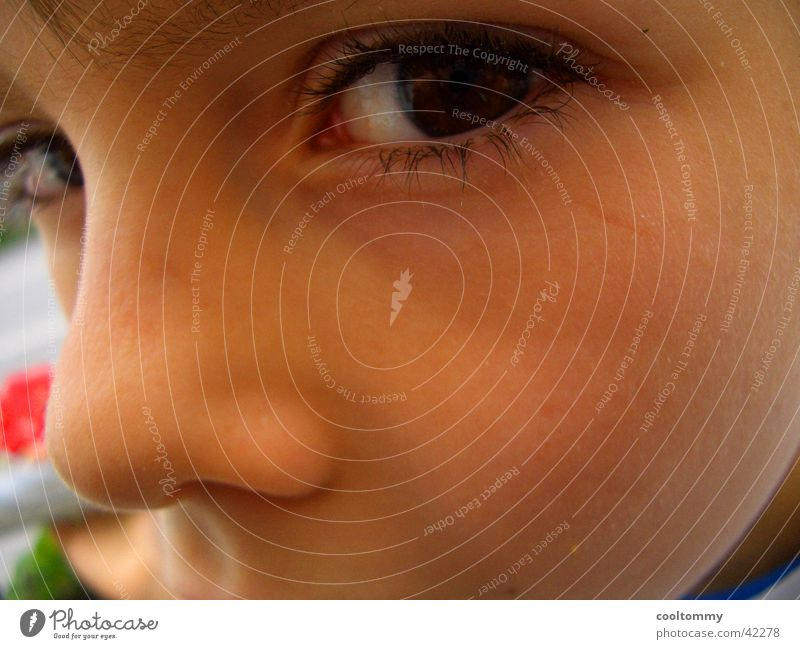 Human being Child Eyes Small Nose