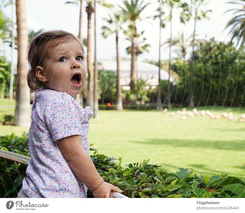 Yawn manipulated Child Parenting Infancy Girl Portrait of a young girl Girl`s face Spring Walking Playing Effortless Palm tree vacation Vacation mood