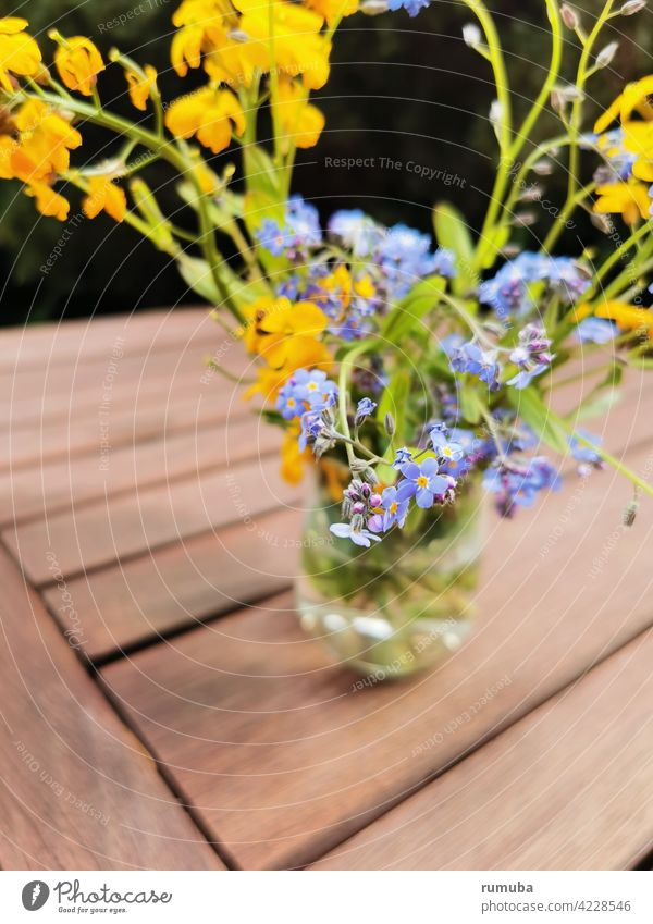 Blue and yellow spring flowers in vase garden flower Garden Flower wild flower Spring Spring fever Abstract Nature Esthetic Exterior shot Vase Bouquet Yellow