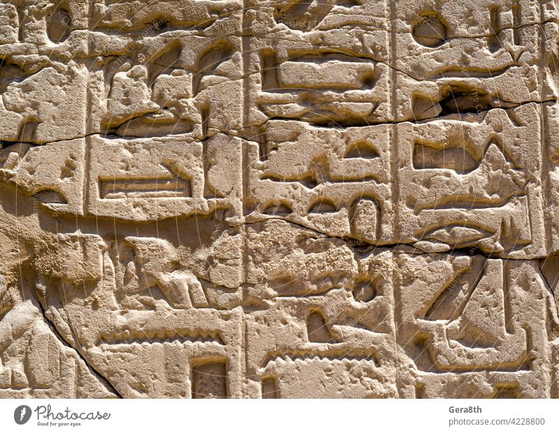Ancient Egyptian hieroglyphs on the wall in Luxor in Egypt Africa ancient ancient alphabet ancient letters architecture authentic background building cairo