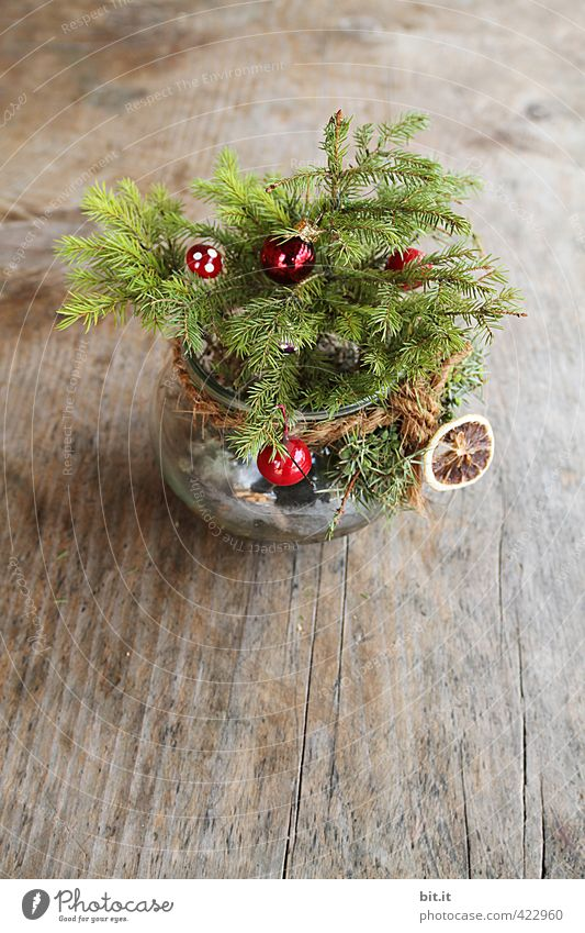 Ick gloob ick spinne! It's Christmas already! Living or residing Decoration Feasts & Celebrations Christmas & Advent Winter Wood Small Natural Cute Beautiful