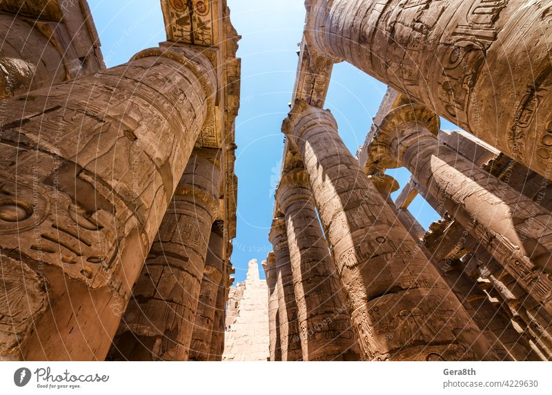 antique statue in the pillared hall in Luxor in Egypt Africa Egyptian ancient architecture authentic blue building cairo close close up color column culture day