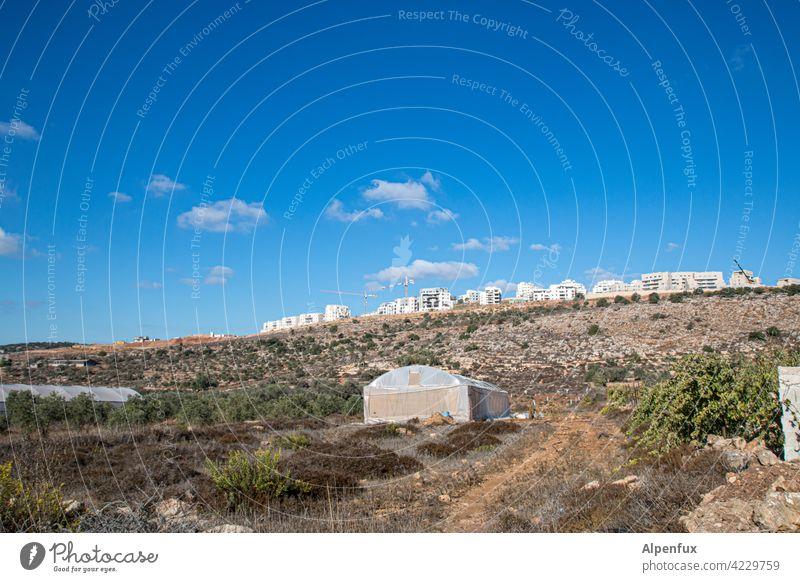 God-given land palaestine Settlement construction Israel west Bank Exterior shot dwell Build House (Residential Structure) settlement Colour photo illicit