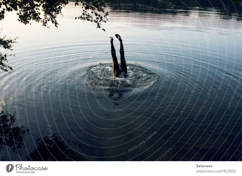 Human being Nature Water Plant Summer Tree Landscape Environment Emotions Coast Swimming & Bathing Lake Legs Jump Natural Feet