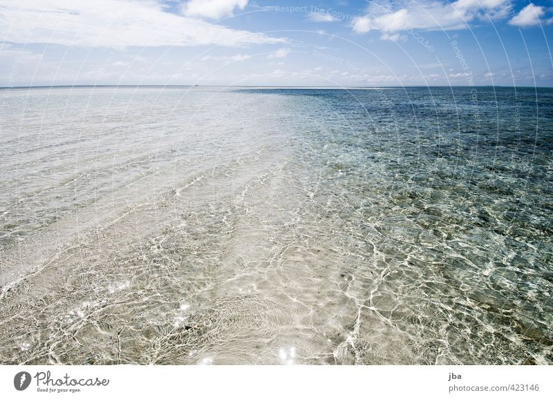 shallow Well-being Contentment Relaxation Calm Vacation & Travel Far-off places Summer Summer vacation Beach Ocean Island Waves Nature Landscape Elements Water
