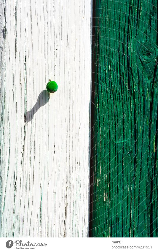 Green and white. Colour coordinated. White Old Weathered Wood Style cracked Design Solid Torn Wood grain Wooden wall pin Pin Shadow Divided Sunlight