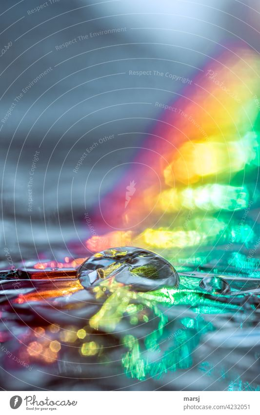 Pure clear water drops illuminated by a bright rainbow Reflection Drops of water Refraction Light (Natural Phenomenon) Experimental Colour photo Multicoloured
