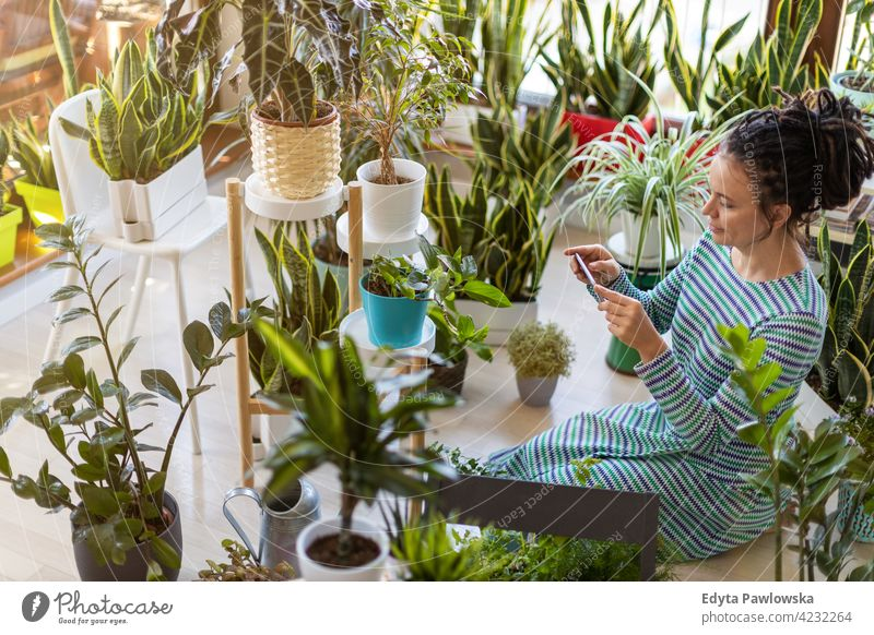 YoWoman taking photo of potted plant with her smartphone floristry care healthy blossom horticulture flora botanical decoration botany grow growing fresh leaf