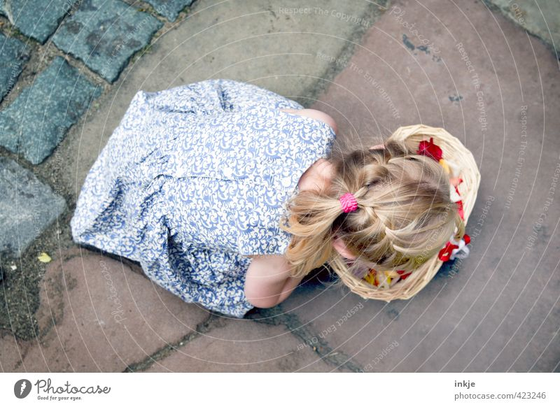 Flower Girl I Feasts & Celebrations Wedding Toddler Infancy Life Body Hair and hairstyles Back 1 Human being 3 - 8 years Child Dress Blonde Long-haired Braids