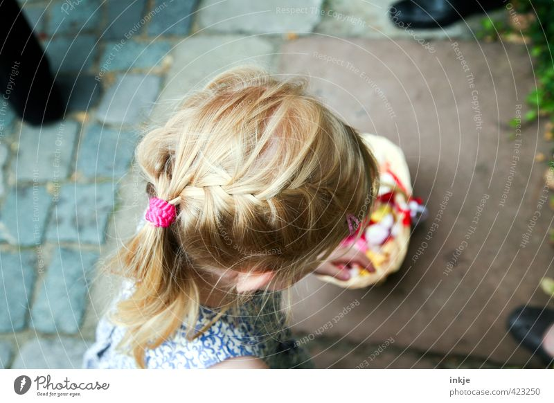 Flower Girl II Feasts & Celebrations Wedding Toddler Infancy Life Head Hair and hairstyles 1 Human being 3 - 8 years Child Blonde Red-haired Long-haired Braids