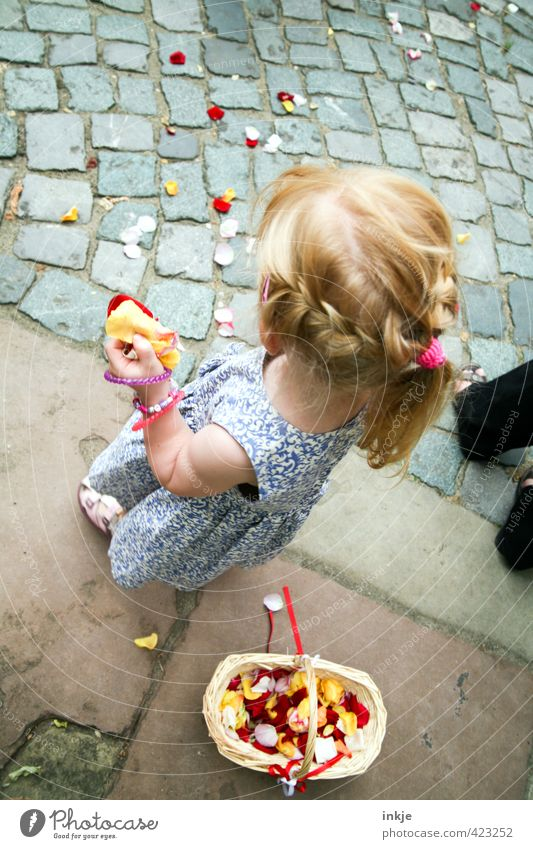 Human being Child Beautiful Summer Girl Life Hair and hairstyles Blossom Feasts & Celebrations Body Blonde Infancy Wedding Joie de vivre (Vitality) Dress Kitsch