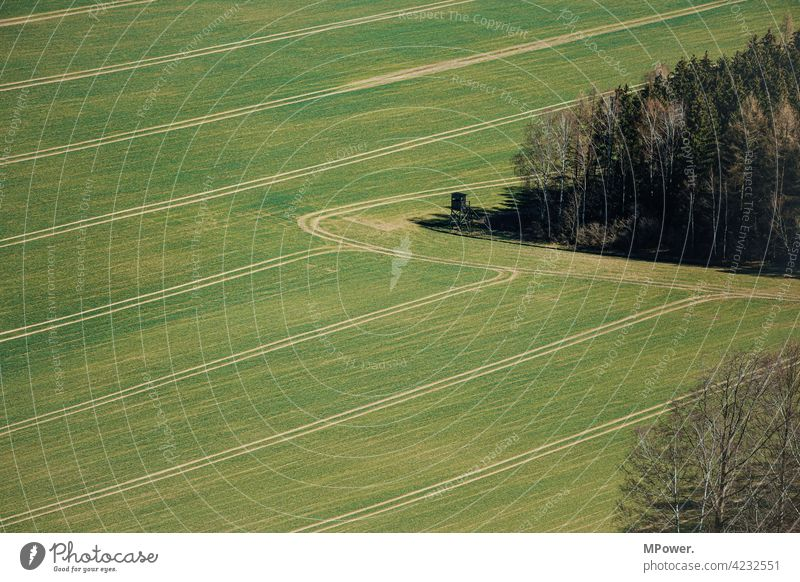 field trial Field Agriculture Tracks Edge of the forest from on high Bird's-eye view Green peasant Grass Landscape Meadow high level hunter's seat Arable land