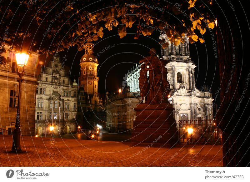 View from the Brühlsche Terasse in Dresden Night Street lighting Tree Leaf Architecture Religion and faith Light