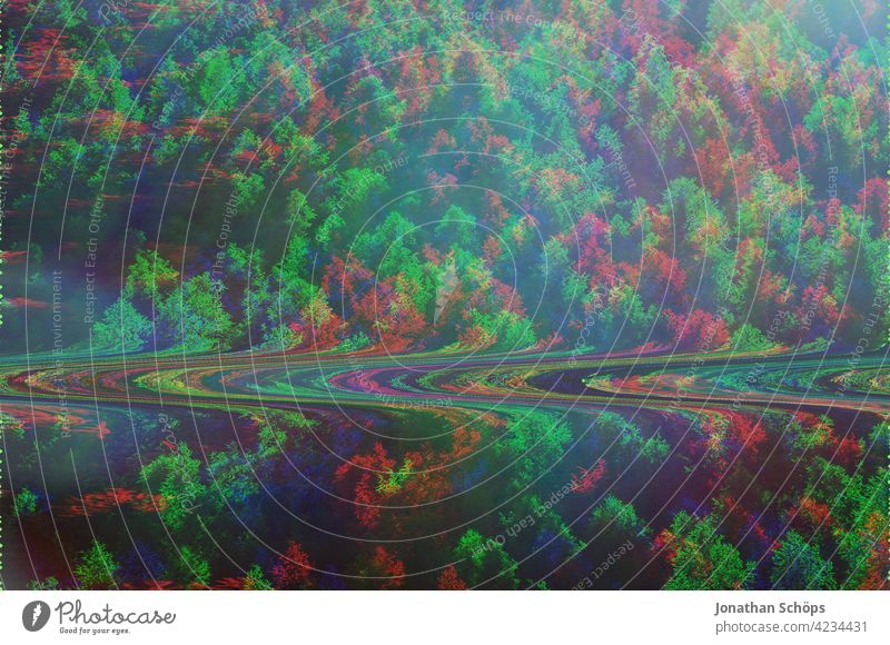 Coniferous trees in forest with glitch effect Forest Tree trunk Coniferous forest Nature Landscape Exterior shot Deserted Environment Colour photo Forestry