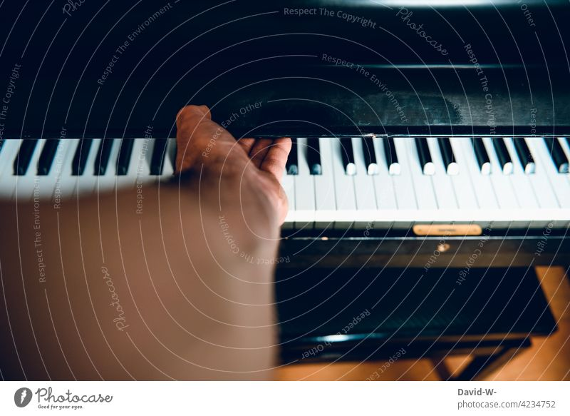 Piano - open or close Close lid Musician Make music Musical instrument Keyboard Play piano Practice Leisure and hobbies Hand Culture