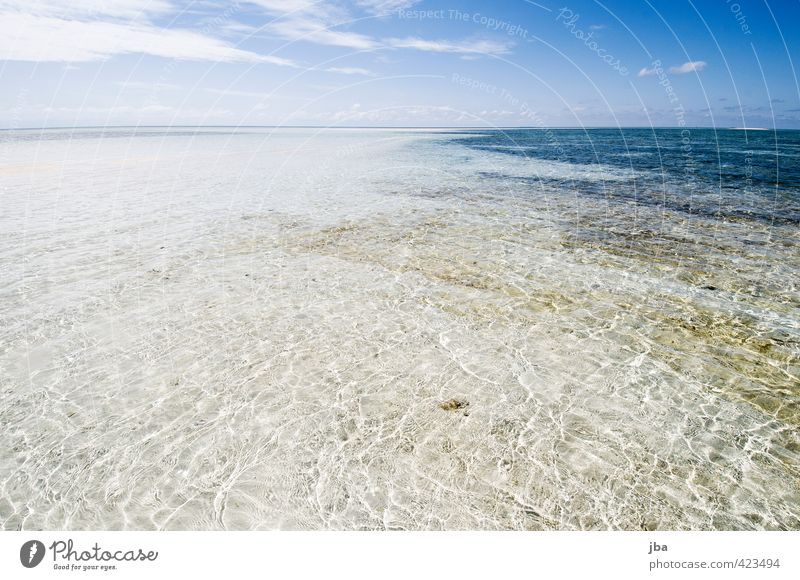 shallow II Well-being Contentment Relaxation Calm Vacation & Travel Far-off places Summer Summer vacation Sun Beach Ocean Island Waves Nature Landscape Elements