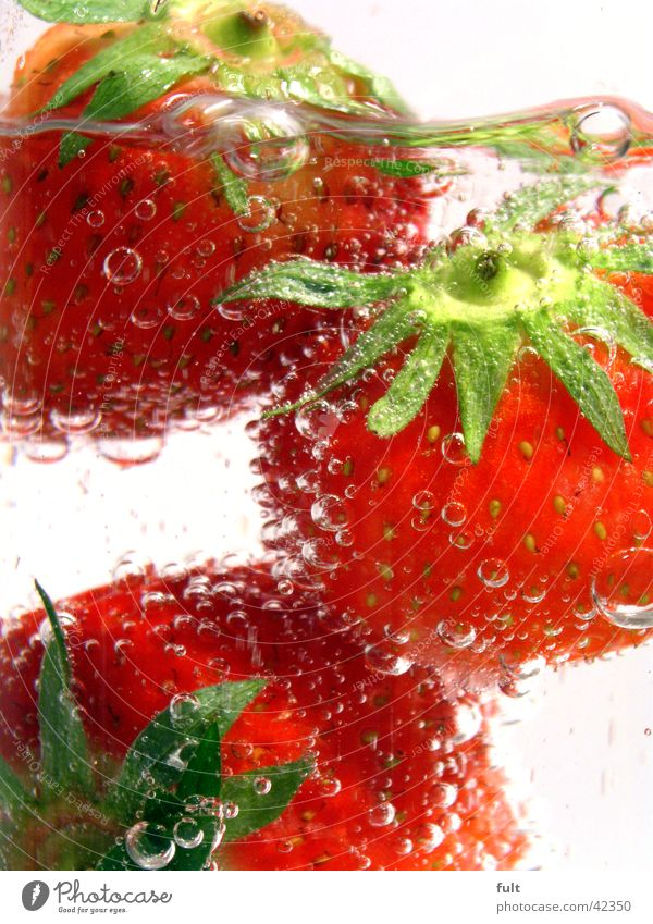 3 strawberries Red Green Style Vitamin Healthy Fresh Wet Damp Nutrition White Underwater photo Touch Near Sense of taste Delicious Beverage Mineral water Picked