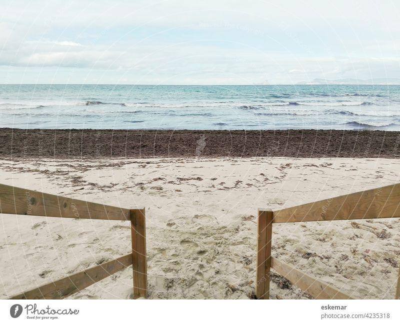 Formentera, Mediterranean Sea Ocean Beach Mediterranean sea Posidonia Sand Sandy beach Ibiza Balearic Islands nobody Deserted Water ocean wave Spain Europe cala