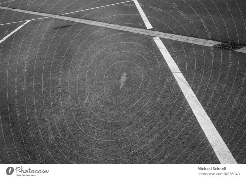 Lines - parking space markings Parking Parking lot Road marking lines Lines & Shapes Structures and shapes Gray Transport
