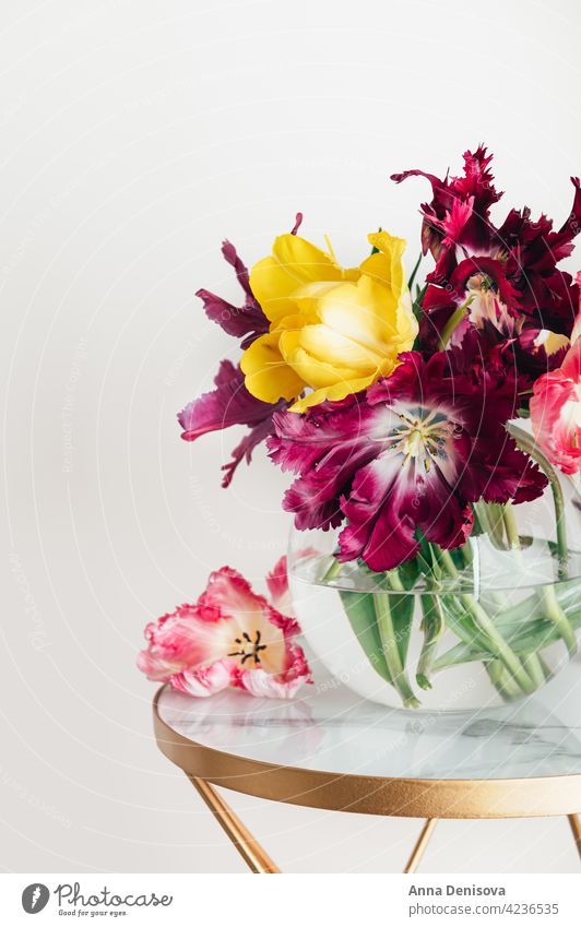 Bunch of Parrot Style Tulips tulips flower parrot tulip bunch of flowers bouquet vase bouquet of flowers flower collections spring-blooming tulipa fresh present