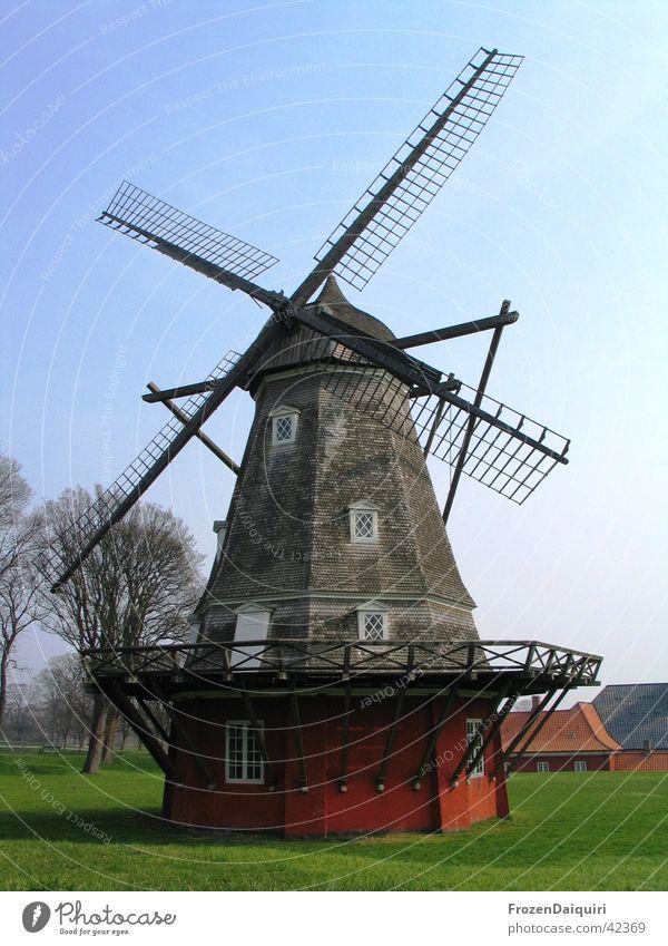 windmill Wood Art Sightseeing Historic Copenhagen Denmark Wood flour Mince Flour Meadow Tree Europe Wind Tourist Attraction Old trees