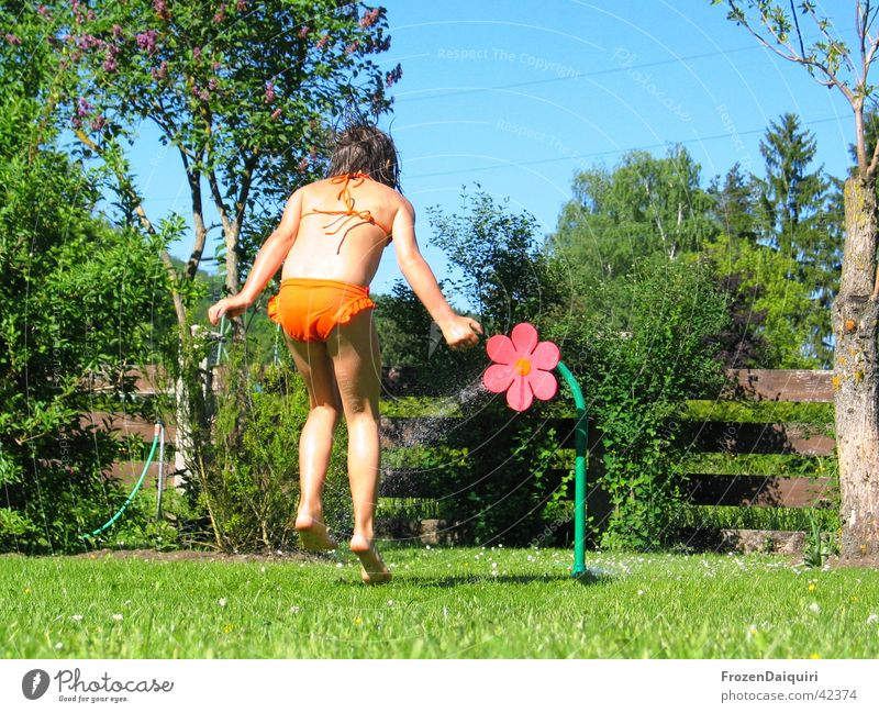 squirrel Child Playing Grass Meadow Hose Summer Bikini Human being Garden gardena Water Sun Joy