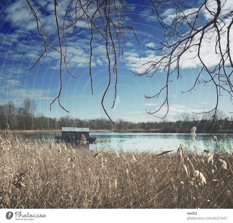 temporise Houseboat Surface of water Watercraft wide Idyll tranquillity Lake Reflection Nature out Exterior shot Sky Clouds Calm Environment Landscape Sunlight