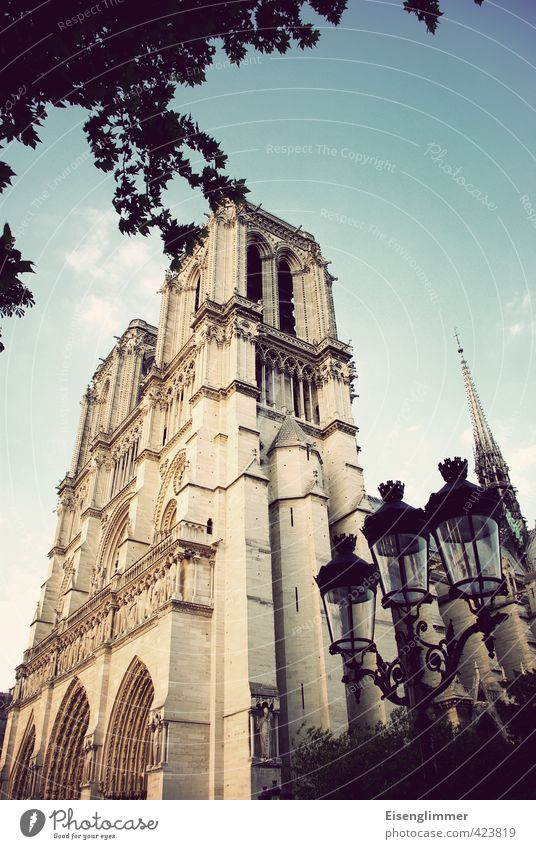 Notre Dame Paris France Europe Cathedral Street lighting Old Esthetic Exceptional Famousness Colour photo Subdued colour Exterior shot Copy Space top Day