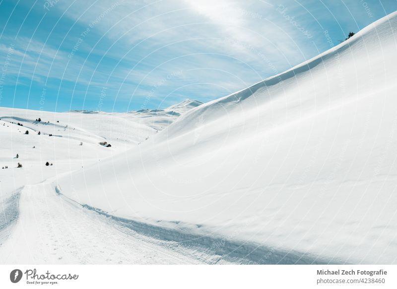 Winter hike in the Swiss Alps near Feldis, Canton of Graubünden landscape blue nature spruce winter forest snow christmas switzerland sky mountain fir travel