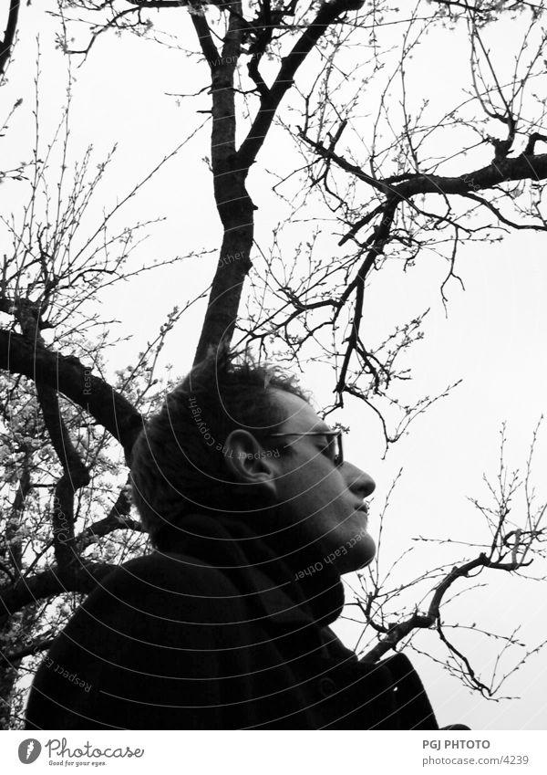 Human tree Tree Man Eyeglasses Human being Nature