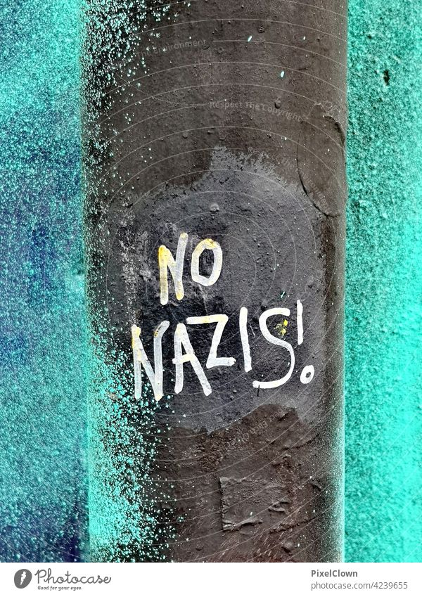 Graffiti with a political statement Flower Mural painting Wall (building) Street art Youth culture Word Wall (barrier) Nazi Characters Subculture