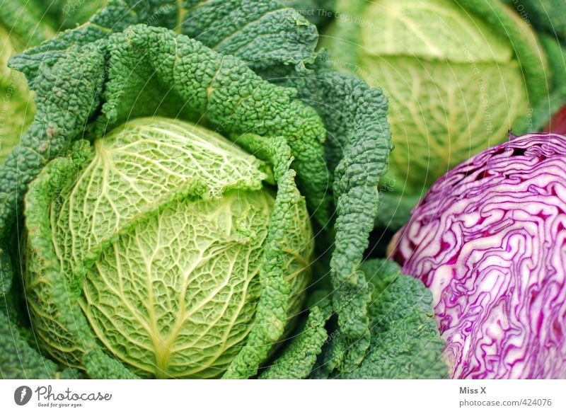 savoy cabbage Food Vegetable Lettuce Salad Nutrition Organic produce Vegetarian diet Diet Fresh Healthy Delicious Green Savoy cabbage Red cabbage Cabbage