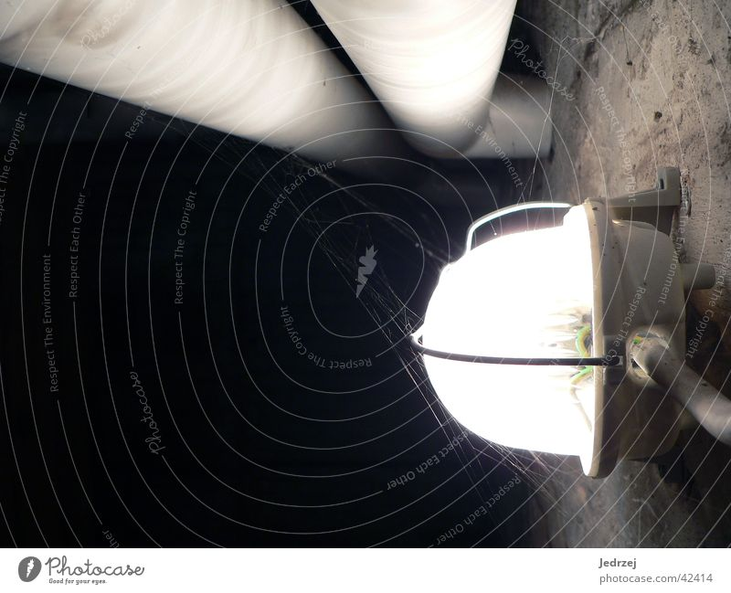 cellar lamp Lamp Water pipe Cellar Wall (building) Dark Electric Bright spider's web Contrast Cable Pipe
