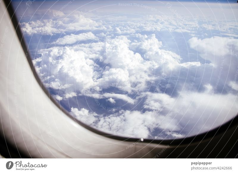 above the clouds Airplane Above the clouds Clouds Aircraft flight Aircraft cabin Aviation Sky Flying Vacation & Travel Blue View from the airplane Exterior shot