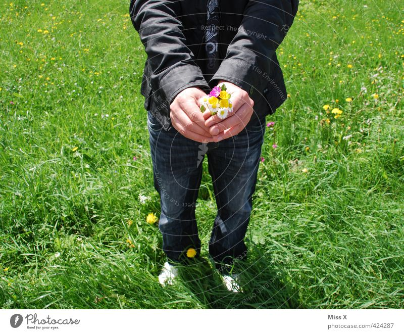 Human being Child Man Youth (Young adults) Summer Flower Adults Young man 18 - 30 years Love Meadow Emotions Spring Moody Masculine Birthday