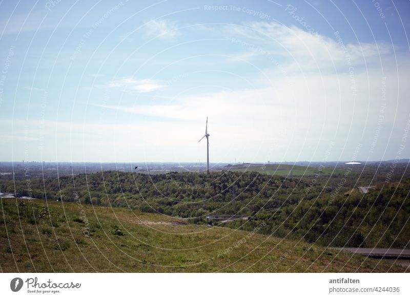 Wind turbine idyll Pinwheel Energy Renewable energy Energy industry Wind energy plant Sky Electricity Environmental protection Technology Eco-friendly