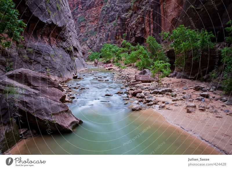 The Narrows Environment Nature Landscape Plant Sand Water Canyon Uniqueness Utah Zion Nationalpark River Long exposure American Flag Calm Relaxation Stone