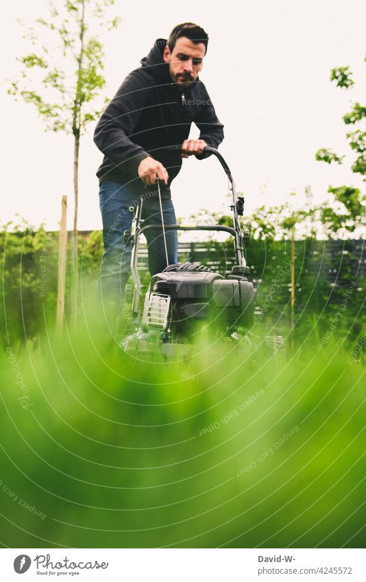 Man starts the lawn mower Lawnmower mares take off Gardening care Grass Green Mow the lawn Petrol lawn mower