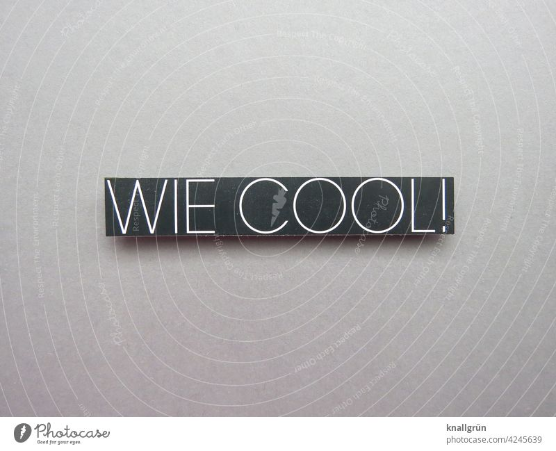 How cool! Cool (slang) Youth (Young adults) Language Communicate Characters Word Letters (alphabet) Typography Text communication Compromise Communication