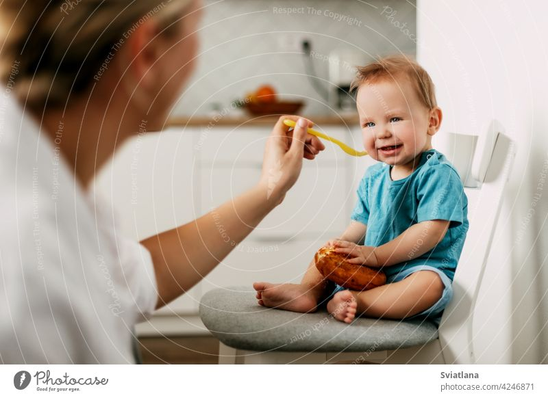 Mom feeds her little son sitting on a chair in the kitchen baby feeding mother high young porridge parent mom food toddler spoon family nutrition boy kid care