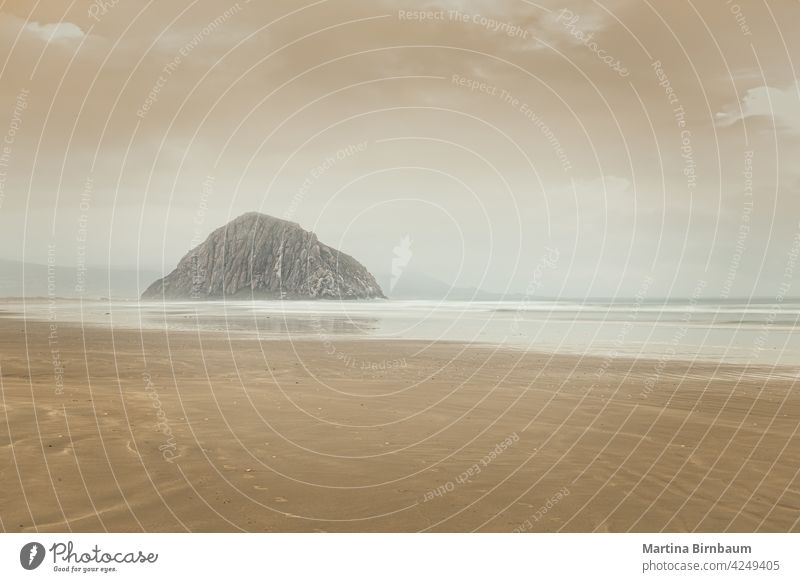 A tranquil morning on the beach of Morro Bay, California morro usa pacific morro bay obispo sand water waves california sea clouds landscape outdoors shoreline