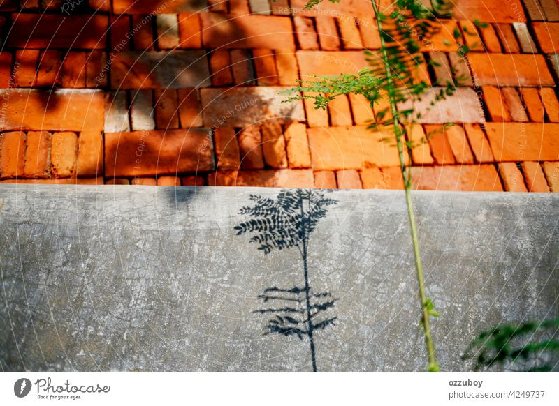 shadow plants on the wall architecture background block brick cement concrete construction exterior hole industry material old pattern rough stack structure