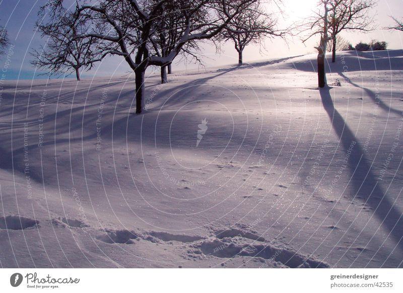 winter landscape Back-light Winter Footprint Mountain Snow