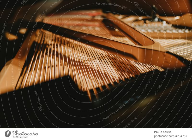 Close up piano strings Piano Piano lessons Piano stool Music Musical instrument Play piano Musician Concert Keyboard instrument Make music Colour photo Fingers