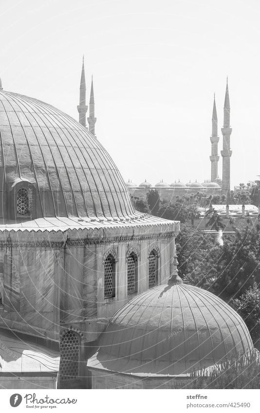 Orient Istanbul Turkey Church Esthetic Exceptional Mosque Blue Mosque Hagia Sophia Elegant Islam Near and Middle East Minaret Domed roof Black & white photo