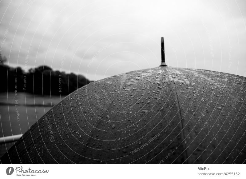 Umbrella with rain black and white grey in grey Rainy weather Wet Bad weather Weather Gray Exterior shot Water Cold Drops of water Deserted Detail Close-up