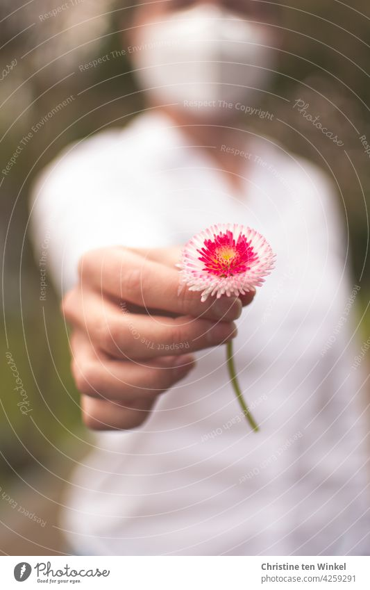 Young woman with white blouse and white FFP2 mask hands over a daisy Daisy little flowers Bellis perennis Thousand Beautiful Made to measure To hold on stop