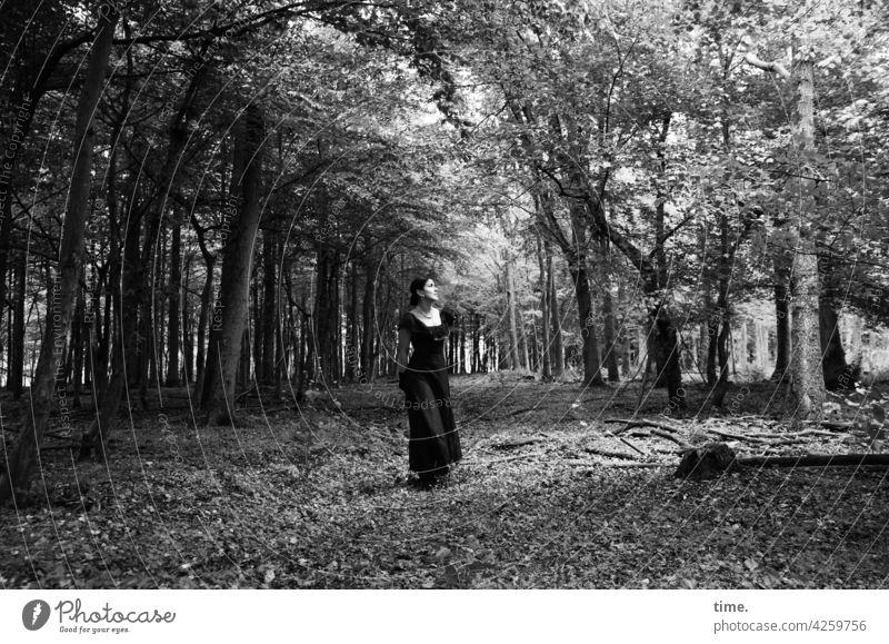 Estila Forest Dress Stand Observe trees clearing In transit Woman Feminine