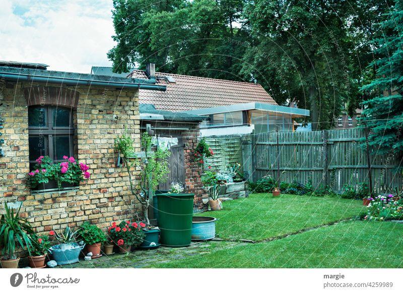 A backyard with flower pots, clothesline and rain barrel Gardenhouse flowers flowerpots Meadow Rain barrel Colour photo Grass Fence Summer Nostalgia Window