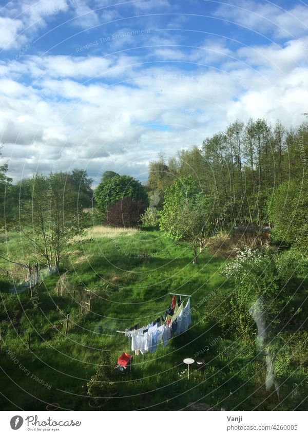 idyllic Meadow Grass Green Nature Landscape dry laundry clothesline idyllically Idyll out Exterior shot tranquillity Clean Laundry